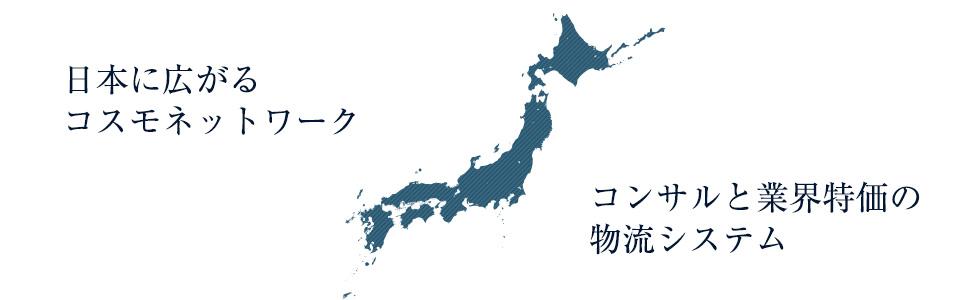 日本に広がるコスモネットワーク、コンサルと業界特価の物流システム